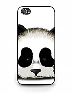 5622877M958261210 Iphone 5 Case, Popular Kung Fu Panda Series Slim Fit Clear Back Cover for Iphone 5S
