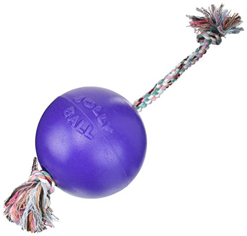 Romp-N-Roll Ball Review