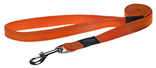 Reflective Dog Leash for Extra Large Dogs, 1 wide, 6 long, Orange