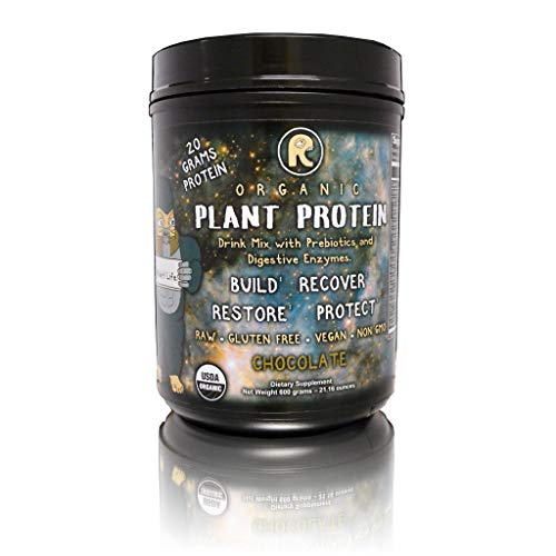 RAWr! Plant Protein - Plant Based Protein Powder + Digestive Enzymes & Probiotics - Certified Organic - Chocolate -Created by Pro Skateboarder John Motta & Pro BMXer/Rare Fruit Grower Joey Motta.