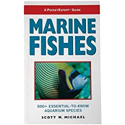 Pocket Expert in Marine Fish