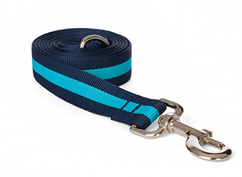 fabdog Classic Stripe Dog Lead, Eco-Friendly Dog Leash (Blue, Small)