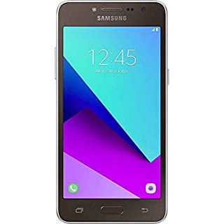 Samsung Galaxy J2 Core 2018 Factory Unlocked 4G LTE (USA Latin Caribbean) Android Oreo SM-J260M Dual Sim 8MP 8GB (Gold)