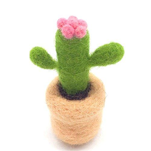 Artec360 Felting Supplies Merino Wool Succulent Plants Needle Felting Kits Within 3 Needles and Tutorial for Felting Beginner (Cactus) ()