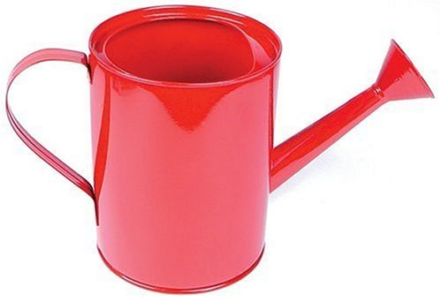 Small Metal Watering Can (Colors May - Tin Watering Can