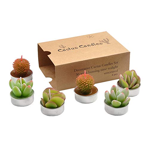 (YanSheng Succulent Cactus Tea Light Tealight Candles 6pcs)