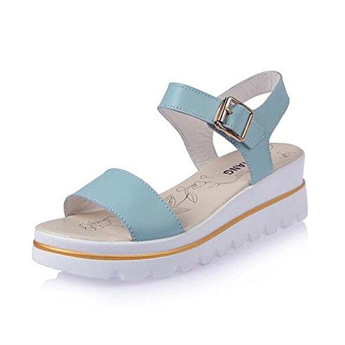 Binying Women's Buckle Peep Toe Flatform Sandals Blue ljzDwkN