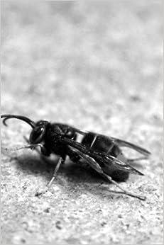 Descarga gratuita Wasp Notebook Epub