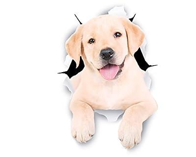 Winston & Bear 3D Dog Stickers - 2 Pack - Cute White Labrador Retriever Stickers for Wall, Fridge, Toilet and More - Retail Packaged White Labrador Stickers