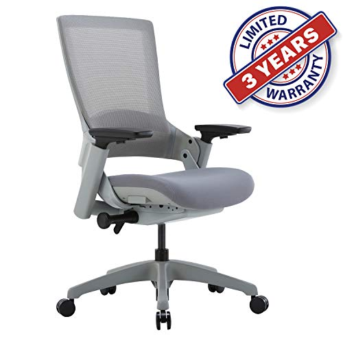 Ergonomic High Swivel Executive Chair with Adjustable Height 3D Arm Rest Lumbar Support and Mesh Back for Home Office (Gray)
