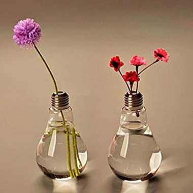 Bulb Shape Glass Vase Flower Plant Water Container Home Wedding Decor