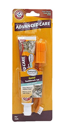 Arm & Hammer Advanced Care Toothbrush And Toothpaste Set for Cats, Tuna Flavor | Best Dental Kit To Treat Bad Cat Breath