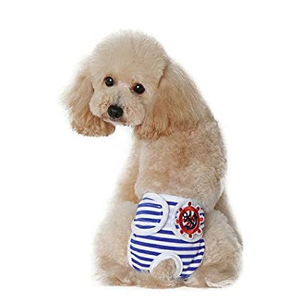 Awhao pañales lavables para perro, diseño de rayas, pantalones sanitarios fisiológicos, pañales para