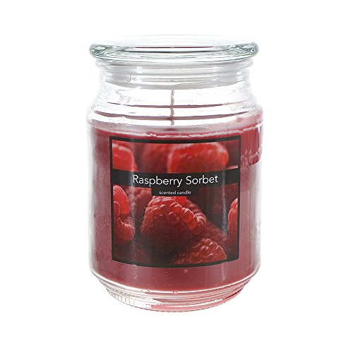 - Scented 18 Ounce Glass Jar Container Candle - Raspberry Sorbet