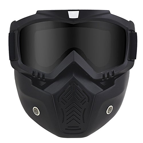 Anti-Fog Windproof Motorcycle Goggles Riding Detachable Modular Face Mask Shield Goggles - Protect Padding Mouth Filter for Motorcycle Helmet (Black) (Paint Mask Stripes)