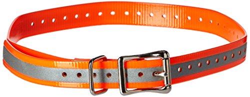 SportDOG Brand 3/4 Inch Collar Strap by SportDOG Brand