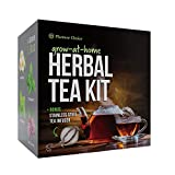 Grow 4 of Your Own Organic Herbal Tea Kit + Stainless Steel Tea Infuser | Chamomile, Peppermint, Lemon Balm, Red Clover | Everything Included: Pots, Soil, Seeds, Booklet, Bamboo Plant Labels