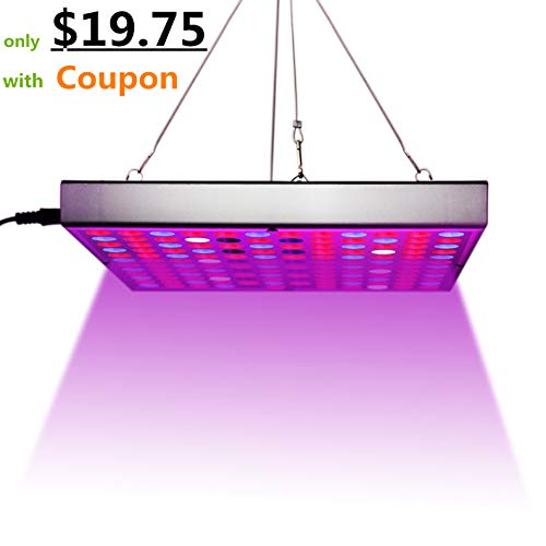 Led Grow Light Basics