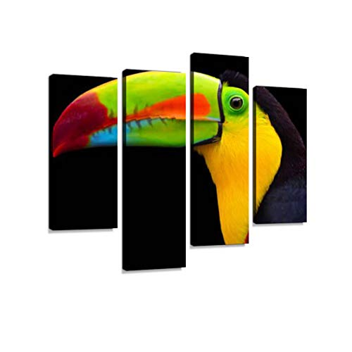 (keel-Billed Toucan in Costa rica Canvas Wall Art Hanging Paintings Modern Artwork Abstract Picture Prints Home Decoration Gift Unique Designed Framed 4 Panel)