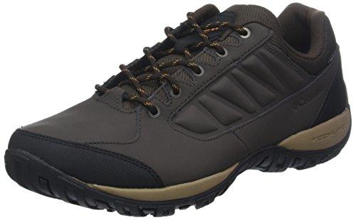 Canyon Gold Brun Randonne Ridge Ruckel De Waterproof Chaussures Homme cordovan Pour 231 Columbia wPHvnZ
