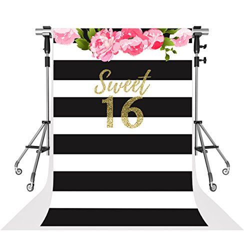 Kate 6.5x10ft Sweet 16 Photo Backdrops Black and White Stripe Background for Birthday Party Shooting ()