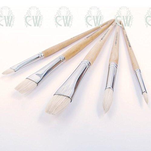 Curtisward Super Hog Artists Value 5 Brush Set. For Oil & Acrylic Paint Pro Arte CWAVB-WA