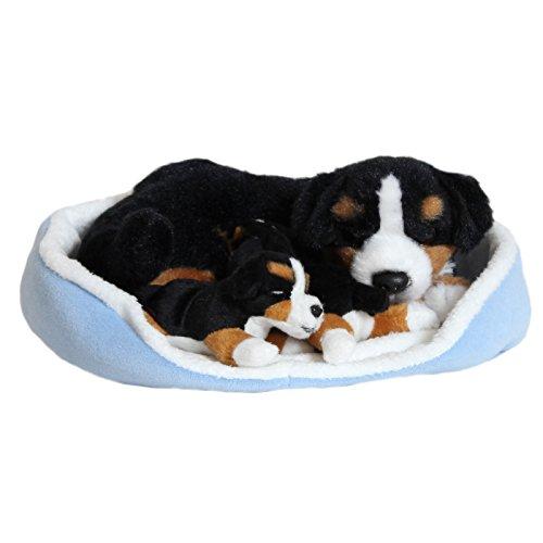 Berner Sennenhund mit Babys im Körbchen 23 x 19 cm, Plüschhund stoffhund