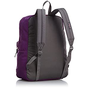 JanSport Digibreak Backpack (VIVID PURPLE)