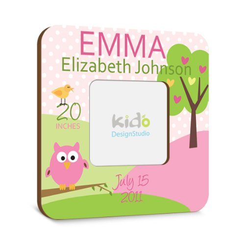 Personalized Baby Girl Picture Frame with Birth Announcement, Pink and Green Nursery Photo Frame, Owl Custom Baby Gift