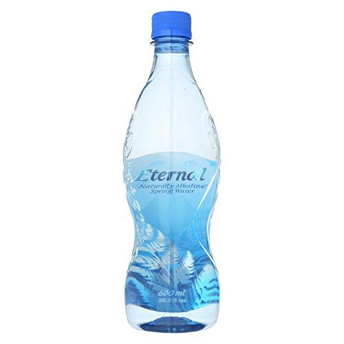 Eternal Naturally Artesian Water - Case of 24 - 600 ml by Eternal Artesian Water