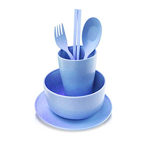 Frost Large Serving Spoon (Finex Wheat Straw Fiber Biodegradable Kid -friendly Mealtime Dinnerware Blue Set with plate bowl cup spoon fork and chopsticks Food grade Non toxic)