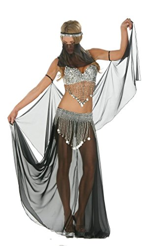[Nom de Plume, Inc Sexy 6PC Bellydancer Costume Set Small Black/Silver] (Sexy Belly Dancer Costumes)
