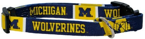 B001JTXLMA NCAA Hunter MFG Michigan Wolverines Dog Collar, Medium 41dPpTjOBbL