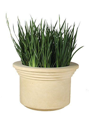 Allied Molded Products 1A-2620-(CBR) APOLLO Planter without Plants, Cedar (Cedar Waste Receptacle)