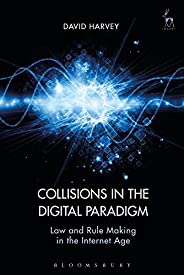 Collisions in the Digital Paradigm: Law and Rule Making in the Internet Age