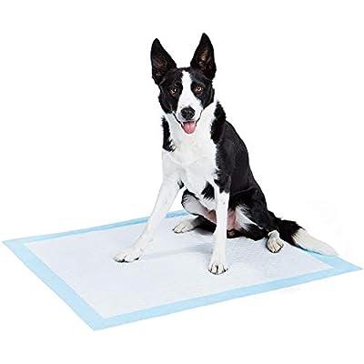AmazonBasics Dog and Puppy Pee, Potty Training Pads, Heavy Duty Absorbency