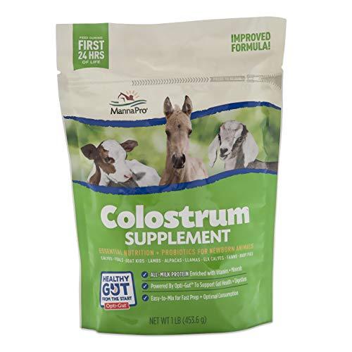 Manna Pro 1000330 Colostrum Supplement, 16-Ounces