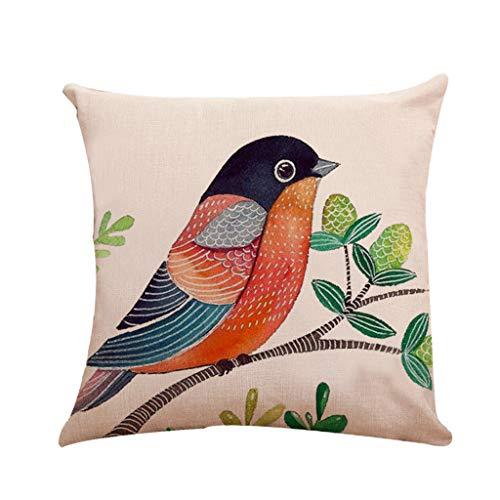 (AOJIAN Home Decor Decorative Bird Throw Pillow Covers Cushion Cover Pillow Protectors Bolster Pillowslip,Pillow Case)