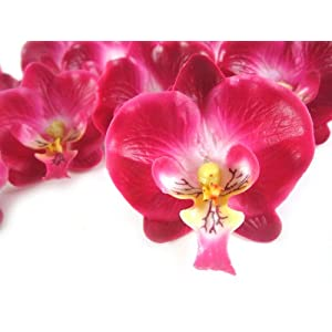 "(50) Small Burgundy Phalaenopsis Orchid Silk Flower Heads - 2"" - Artificial Flowers Heads Fabric Floral Supplies Wholesale Lot for Wedding Flowers Accessories Make Bridal Hair Clips Headbands Dress 9"