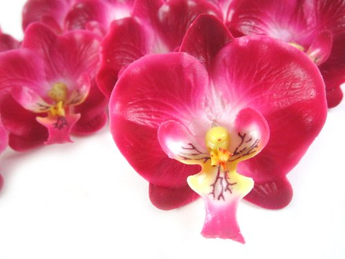 (50) Small Burgundy Phalaenopsis Orchid Silk Flower Heads - 2