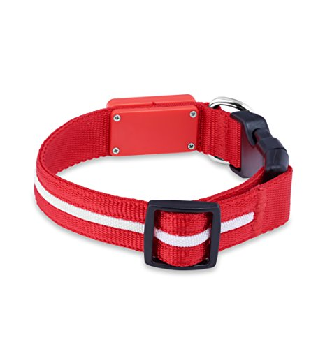 Flashing Dog Collars Rechargeable
