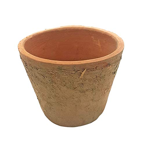 HEAVYWEIGHT AGED RUSTIC OLD TERRACOTTA MADE UK FLOWER HERB PLANT POT 5