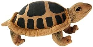 Turtle No.3816 (japan import)