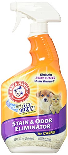 Arm & Hammer Pet Stain and Odor Eliminator, 32 Ounce (Pack of 2) (Pet Stain And Odor Remover Arm And Hammer)
