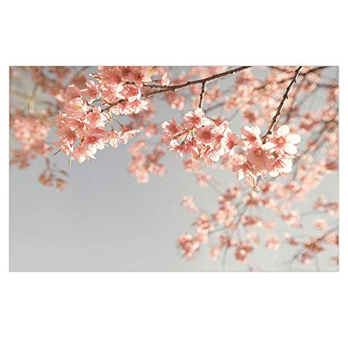 Places Springs Coral (3D Floor/Wall Sticker Removable,Peach,Japanese Scenery Sakura Tree Cherry Blossom Nature Photography Coming of Spring Decorative,Bluegrey Coral,for Living Room Bathroom Decoration,35.4x23.6)