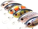 6 Hard Baits Fishing Lures in One Tackle Box Deep Water Crankbait RealSkin Painting Hard Bait for Bass Fishing HC55KB