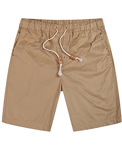 Lende Men's Casual Classic Fit shorts Beach shorts FBA