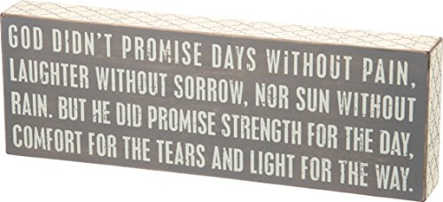 Primitives by Kathy Box Sign, 14 x 4.75-Inch, Gray - God Didn't Promise
