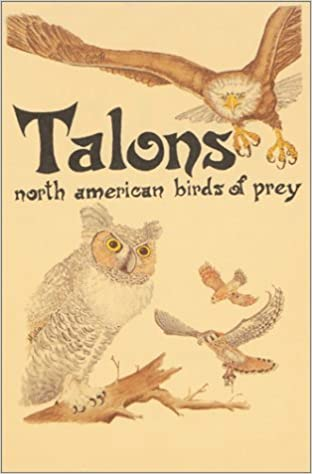 By Millie Miller Talons North American Birds Of Prey Pocket Nature Guides Illustrated Edition 1989 03 16 Paperback Millie Miller 8601422083194 Amazon Com Books