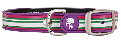 Dublin Dog Co All Style No Stink Classic Stripe Dog Collar, Pirate Punch, 12.5 by 17-Inch, Medium